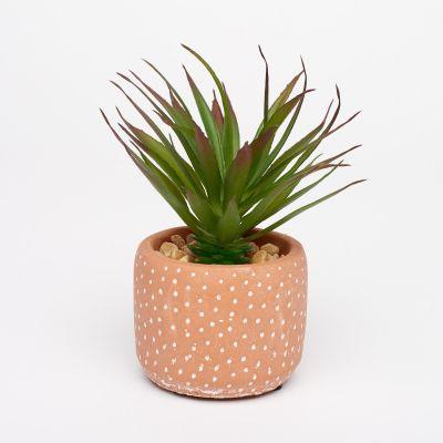 Debenhams Small Artificial Succulent Plant in Spotted Concrete Pot