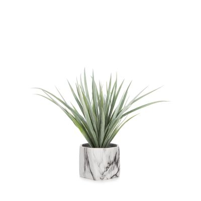CM ALOE PLANT, MARBLE POT